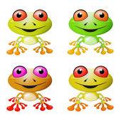 Red-eyed Tree Frog Vector Illustration — Stock Vector