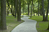 The shady paths in the park. — Foto Stock