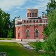 Palace built in royal residence Tsaritsyno. — Stock Photo #37751347