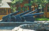 Coastal artillery battery. — Stockfoto