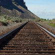 Train tracks vanishing point — Stock Photo