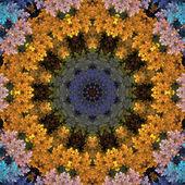 Colorful Mandala Circle — Stock Photo