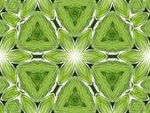 Groene mandala bloem — Stockfoto