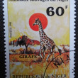 NIGER - CIRCA 1981: A stamp printed in NIGER shows a giraffe, one of the wild animals of Niger, circa 1981. — Stock Photo