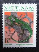 NORTH VIETNAM - CIRCA 1975: A stamp printed in NORTH VIETNAM shows a Chinese Water Dragon (Physignathus cocincinus) also known as Asian Water Dragon or Green Water Dragon, circa 1975. — Stock Photo