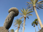 Palm trees and stones — Stock Photo