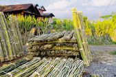 Countryside home with bamboo striker. — Stock Photo