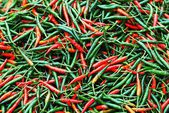 A pile of chili peppers — Foto Stock