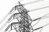 Lignes de transmission de puissance — Photo