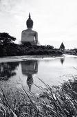 Buddha at the paddy fields — Photo