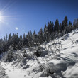 Winter landscape with steps in the snow and sun at blue sky — Stock Photo