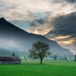 Old wooden hut with single tree at dramatic tyrol sunset — Stock Photo #34710883