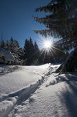 Wonderfull and dreamy winter scenery with a lot of snow, trees, sun and blue sky — Zdjęcie stockowe