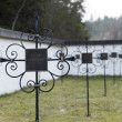 Crosses at graveyard for black death victims — Stock Photo #34830609