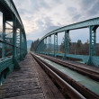 Railway train bridge with cyan painted steel framework over river — Stock Photo