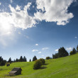 Stock Photo: Scenic background of beautiful green alpine pasture under blue sky dotted with trees and small quaint wooden hut
