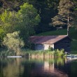 Hut grown in between trees and bushes at idyllic lake — Stockfoto
