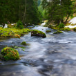 Water of river flows through mossy rocks and green nature landscape — Stock Photo #45168175