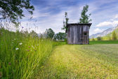 Rural meadow with high grass and old wooden hut at mowed grass — Stock Photo