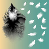Vector illustration of feather — Stock Vector