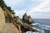 Steinküste mit Blick ans Meer — Stock Photo