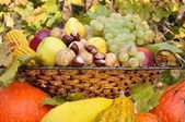 Colorful autumn fruits and vegetables composed in dish — Stok fotoğraf