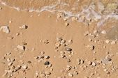Sandy beach with pebbles and wave — Stock Photo