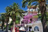 Beautiful promenade of Podgora with flowers and palm trees — Stock Photo