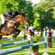 Horse with jockey jumping a hurdle — Stock Photo #40865757