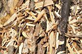Organic background of woodchips — Stock Photo