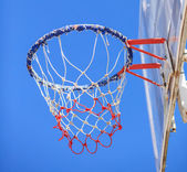 Basketball hoop and a cage with leaves, sports background. — Stock Photo