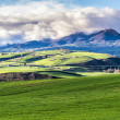 Rural landscape in south of italy — Stock Photo