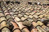 Roof — Stock Photo