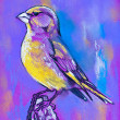 Stock Photo: Original pastel paintings on cardboard. Bird on branch.