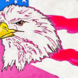 Original pastel paintings. USA eagle — Foto Stock