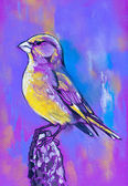 Original pastel paintings on cardboard. Bird on branch. — Stock Photo