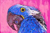 Original pastel paintings on cardboard. Parrot in blue. — Stock Photo