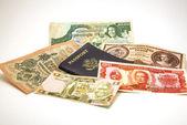 Passaporte e moeda estrangeira 2 — Fotografia Stock