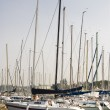 Stock Photo: Yachts at berth