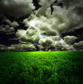 Thunderstorm with Lightning in Green Field — Stock Photo