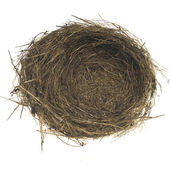 Bird nest on white — Stock Photo
