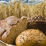 Rye bread — Stock Photo