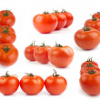 Tomatoes collection isolated on white — Stock Photo