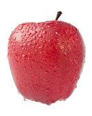Beyaz izole ıslak Kırmızı elma — Stok fotoğraf