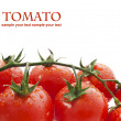Close-up photo of tomatoes with water drops — Stock Photo #34931179