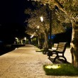 Benches on the pavement in the light of a lantern — Stock Photo #35392425