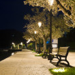 Benches on the pavement in the light of a lantern — Stock Photo