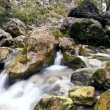 Mountain River — Stock Photo #35392611
