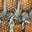 Pineapple — Stockfoto #35393367
