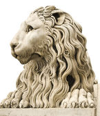 Ancient marble statue of a male lion isolated on white — Stock Photo